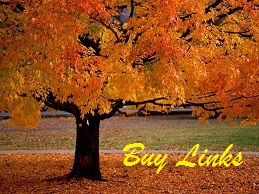 Fall Tree Blog - sm - Buy Links