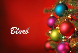 Christmas 2015 Blog blurb
