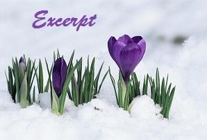 Excerpt Spring Blog - Copy