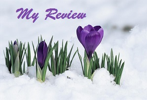 Review Spring Blog - Copy