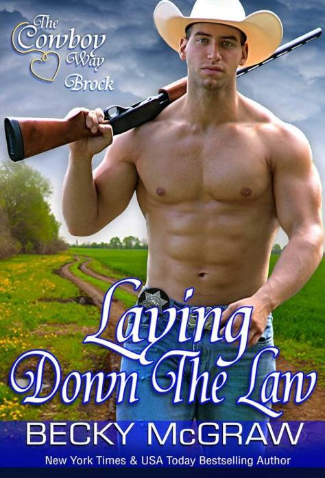 LayingDowntheLaw Cover